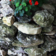 Red Flowers And Rocks Art Print