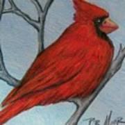 Red Fluff Art Print