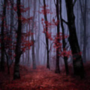 Red Forest 2 Art Print