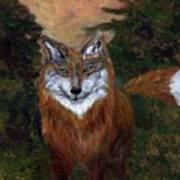 Red Fox - www.jennifer-d-art.com Art Print