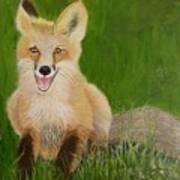 Red Fox 2 Art Print
