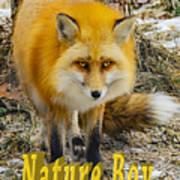 Red Fox Nature Boy Art Print