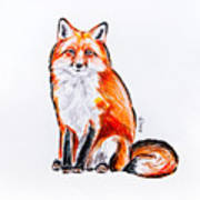 Red Foxie Art Print