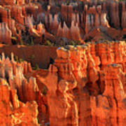 Red Glow On Hoodoos Of Bryce Canyon Art Print