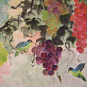Red Grapes And Blue Birds Art Print