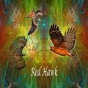Red Hawk Moon Art Print