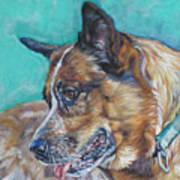 Red Heeler Australian Cattle Dog Art Print by Lee Ann Shepard