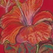 Red Hibiscus #1 Art Print