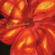 Red Hibiscus 1 Art Print
