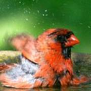 Red Hot Bath Art Print