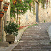 Red Ivy And Steps In Assisi Italy Art Print