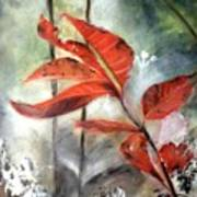 Red Leaves In Morning Mist Art Print