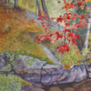 Red Maple Leaves Art Print