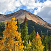 Red Mountain Fall Colors Art Print