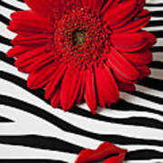 Red Mum And Red Lips Art Print