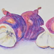 Red Onions And Garlic Art Print