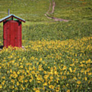 Red Outhouse 6 Art Print