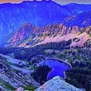 Red Pine Panorama Art Print