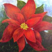 Red Poinsettia Art Print
