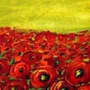 Red Poppies Field  Art Print