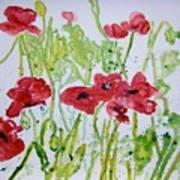 Red Poppy Flowers Art Print