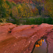 Red Rock Reflection Art Print