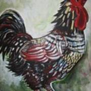 Red Rooster Art Print