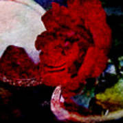 Red Rose And The Mirror Art Print