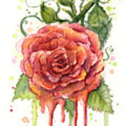 Red Rose Dripping Watercolor  Art Print