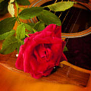 Red Rose Natural Acoustic Guitar Art Print by M K  Miller