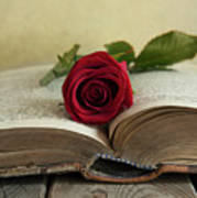 Red Rose On An Old Big Book Art Print