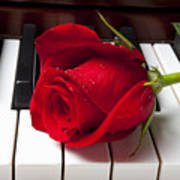Red Rose On Piano Keys Art Print by Garry Gay