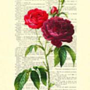 Red Roses For Valentine Art Print