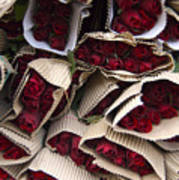 Red Roses Wrapped In Paper Displayed Art Print