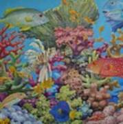 Red Sea Reef Art Print
