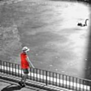 Red Shirt, Black Swanla Seu, Palma De Art Print