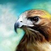 Red Tail Hawk  Art Print by Crispin  Delgado