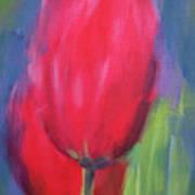 Red Tulips 1 Art Print