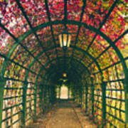 Red Tunnel Art Print