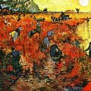 Red Vineyard Art Print