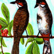 Red-whiskered Bulbul Bird, #246 Art Print