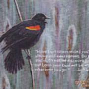 Red Wing Blackbird Art Print