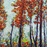 Red Woods Art Print