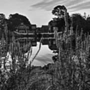 Redd's Pond Lupines Sunrise Black And White Art Print