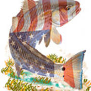 Redfish, White And Blue Art Print