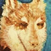 Red's Wolf Art Print