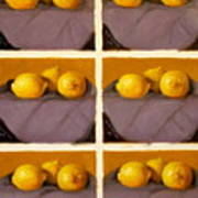Redundant Lemons Art Print