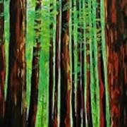 Redwoods Majestic 2 Art Print
