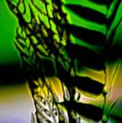 Reeds And Ferns Art Print