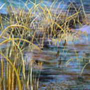 Reeds In The Water Art Print